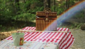 25 ideias de mesas de picnic portáteis